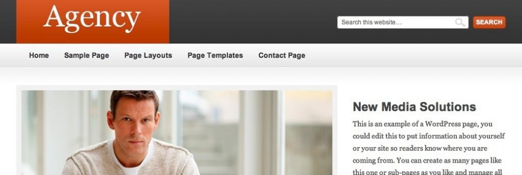 Agency Theme from StudioPress