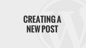 Creating a New Post