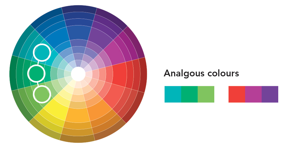 Curvy-colour-inspiration-wheel-analgouscolours