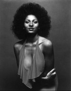 026-pam-grier-theredlist