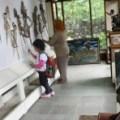 Museum Kekayon, Yogyakarta