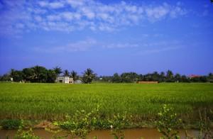 Weather in Siem Reap