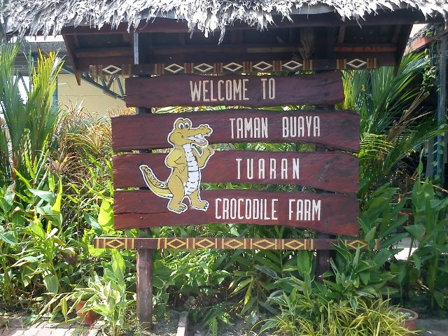 Tuaran Crocodile Farm in Kota Kinabalu