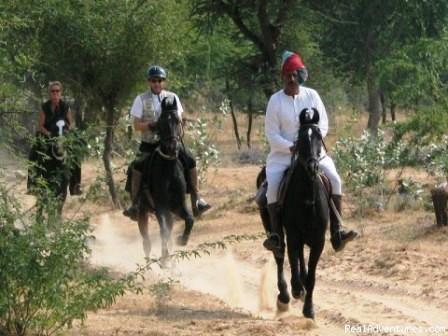 horse riding, activity, udaipur