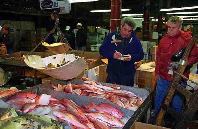 fish market, male, maldives