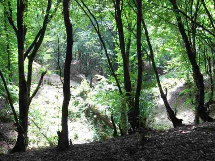 park, natural wonders, azerbaijan,
