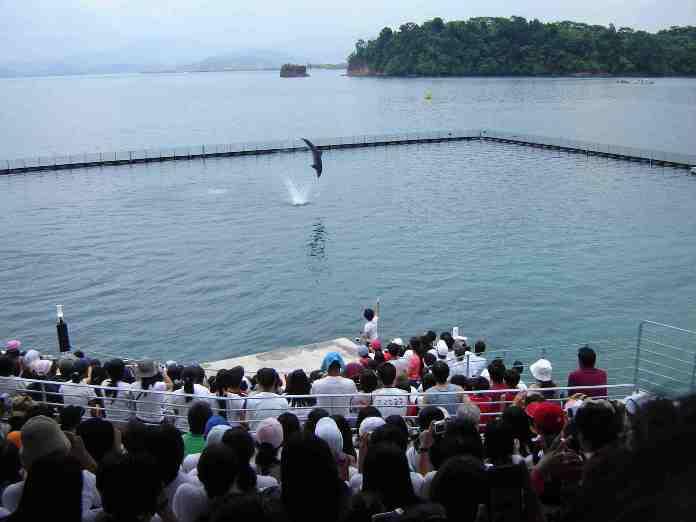ocean park, subic, philippines
