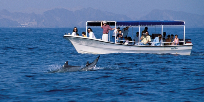 whale watching, oman