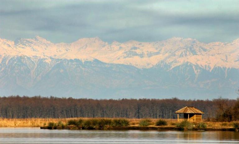 national park, kolkheti, georgia