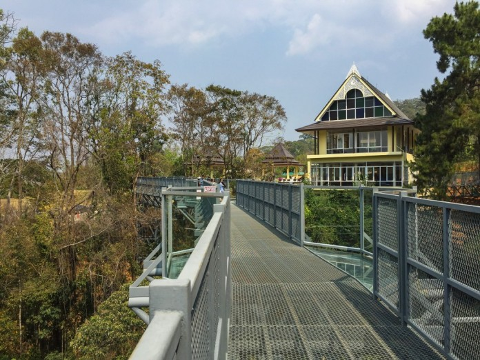 canopy walking, queen siriki botanical garden, activity, thailand, chiang mai