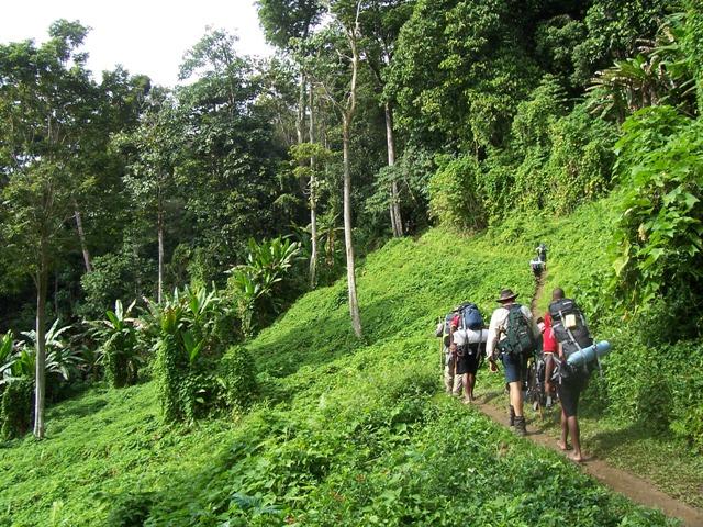 trekking, kokoda trail, papua new guinea