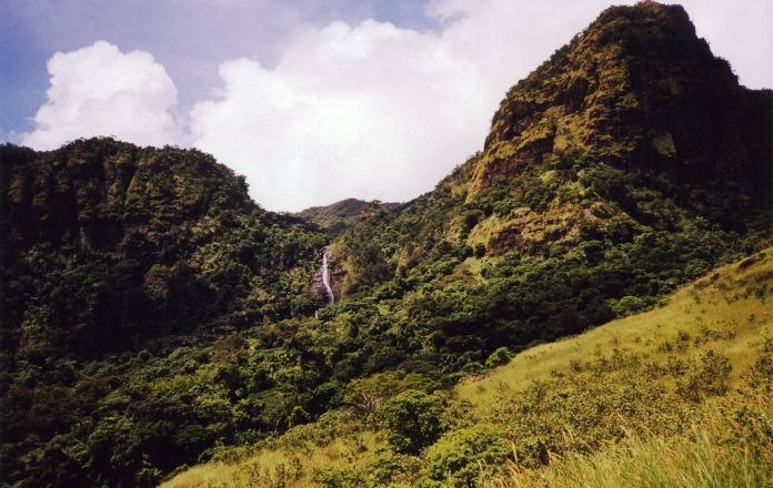 heritage park, nature reserve park, fiji