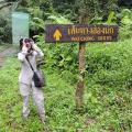 birdwatching, krabi, thailand
