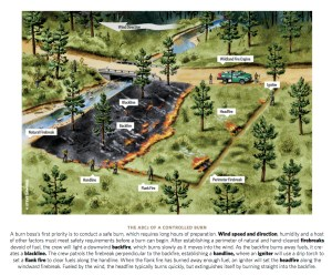Wildfire Suppression | Coalition for the Upper South Platte