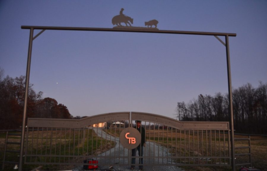 cropped-Driveway-gate-cutting-horse-metal-art-entrance-CT-Bryant.jpg