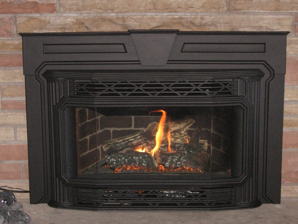 Regency fireplace insert on CustomFireplace Quality electric gas and wood fireplaces and stoves