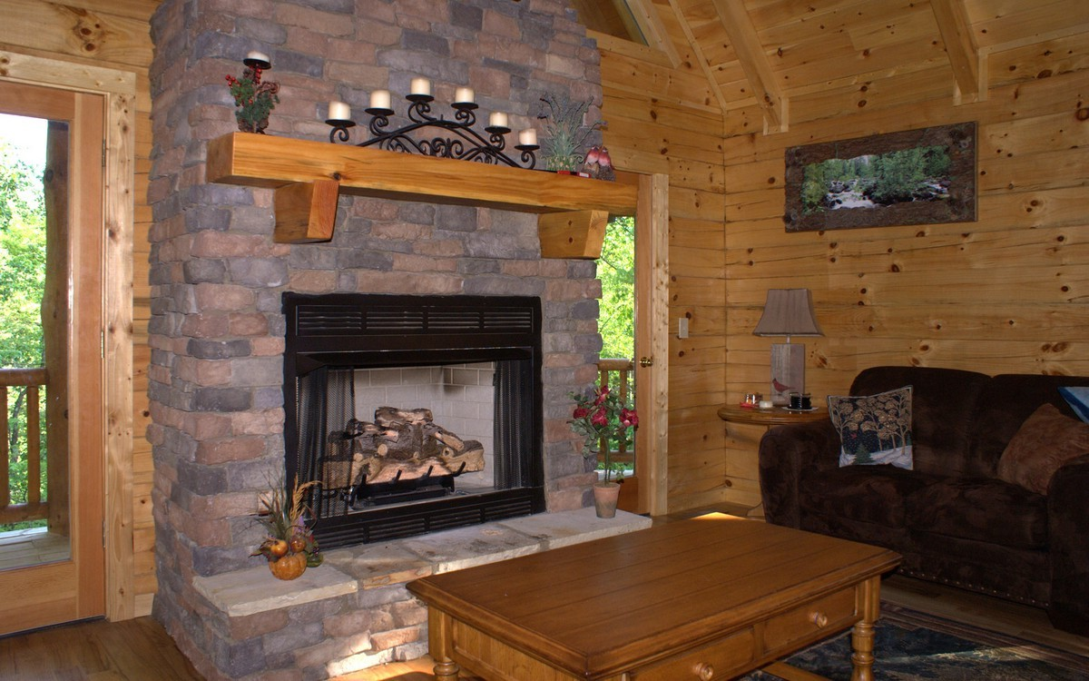 Fireplace pictures on CustomFireplace Quality electric gas and wood fireplaces and stoves