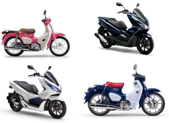 Hondago 125cc