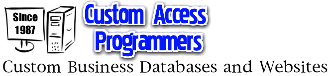 Microsoft Access consulting  Access programmer