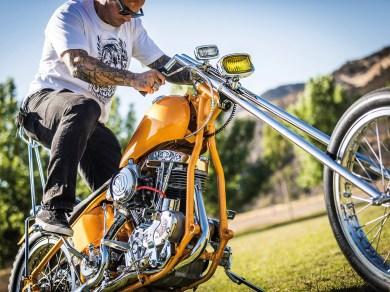 Harley-Davidson Shovelhead – People's Champ