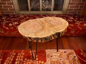 Maple wood slice table with metal pin legs