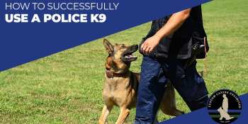 How To Successfully Use A Police K9 (Part 1)