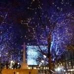 Christmas_lights_in_Sloane_Square