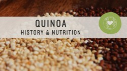 Quinoa Benefits Hair Scalp Skin