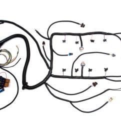 97 04 ls1 w 4l60e standalone wiring harness dbw custom image stock ls1 harness custom ls1 wiring harness [ 1688 x 1080 Pixel ]