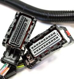 ls2 wiring harness transmission [ 1620 x 1080 Pixel ]