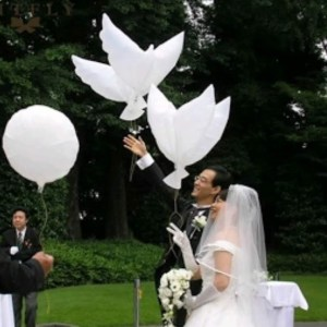 Dove wedding balloons