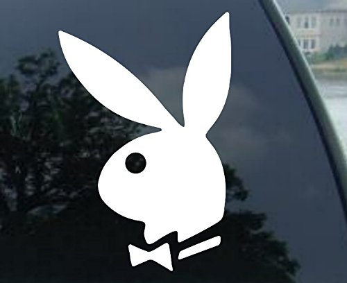 bunny vinyl transfer