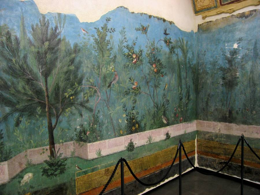 Inspiration The Decorative Wall Paintings Of Casa Di Livia