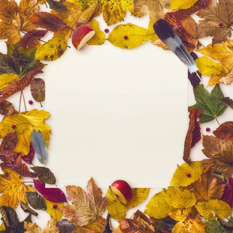 mockup-autumn-scene-8