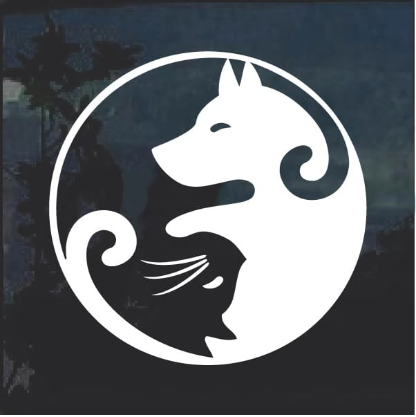 cat and dog yin