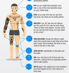 most painful places to get tattooed infographic [ 600 x 1800 Pixel ]