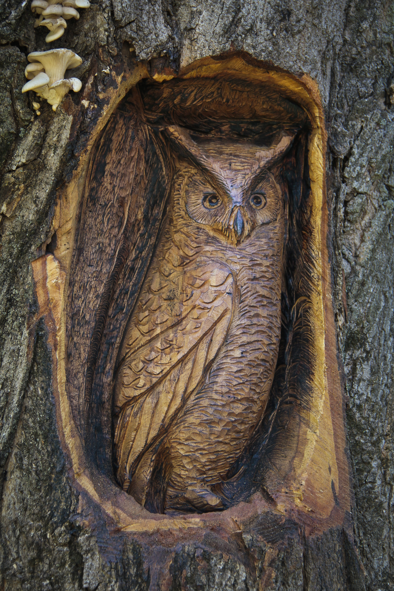 Chiselcraft large owl baby owl wooden log carving wall plaque