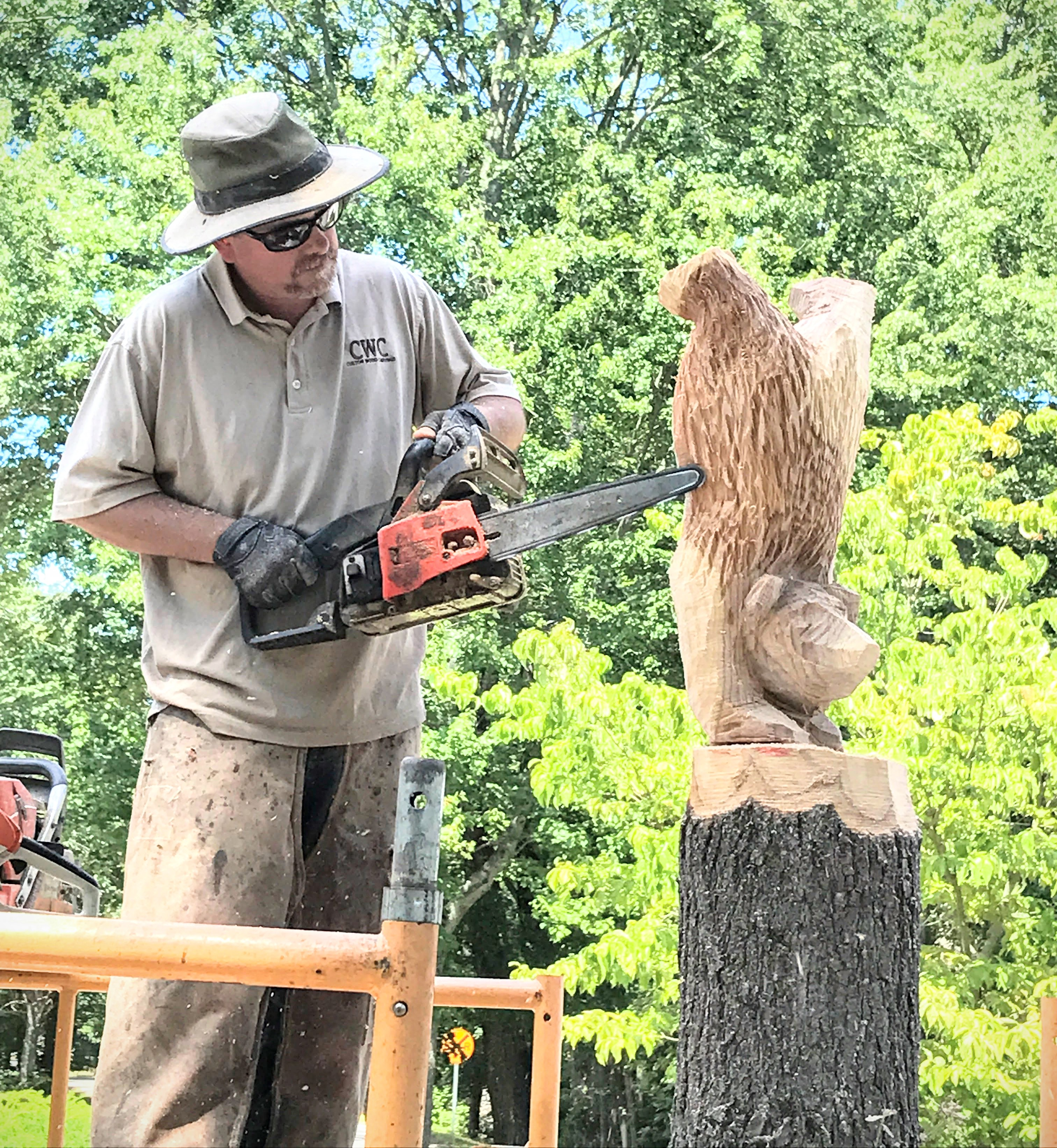 Chainsaw carving a bear a complete step by step guide jamie