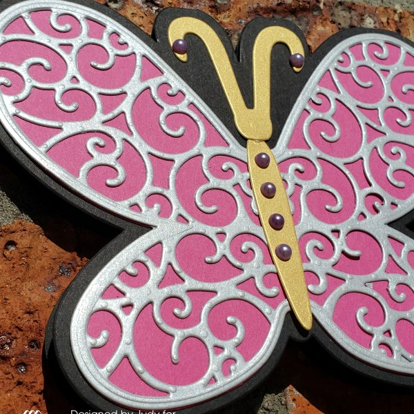 Who Doesn't Love A Butterfly!