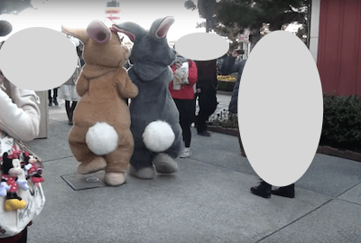 bunny08 min - イースター では ミス・バニー & とんすけ が大活躍!!〜 ストアのグッズがかわいい❤︎