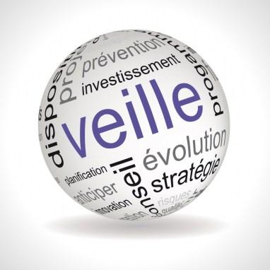 Le développement d'un dispositif de veille stratégique