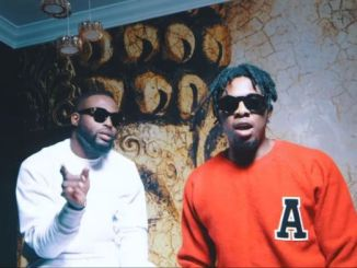 Download Video DJ Neptune ft Runtown Why mp4