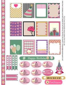 Free Printable Birthday Sampler Sticker Kit for Erin Condren Life Planner