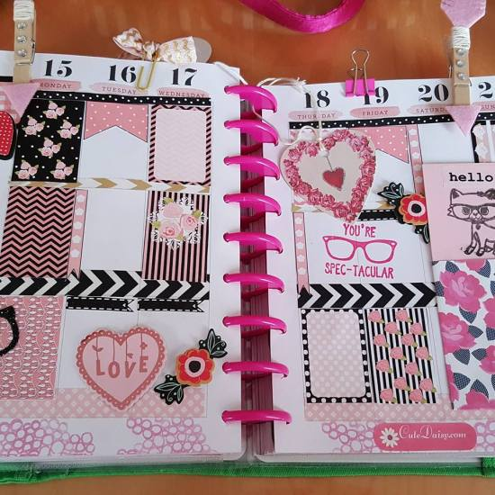Black and Pink Shabby Chic stickers used in Planner