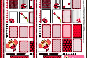 LadyBug Stickers for Happy Planner and ECLP