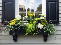 20 Gorgeous Window Box Ideas Adding Floral Magnificence To ...
