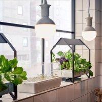 20 Marvelous Indoor Garden Ideas Combating Lack of Space ...