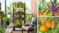 25 Gorgeous Vertical Garden Ideas That are A Boon for ...