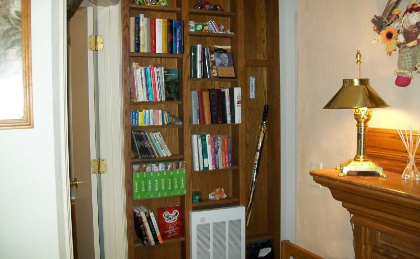 The Entertainment Shelves hold Books, DVDs, Puzzles, Games, And Local information...