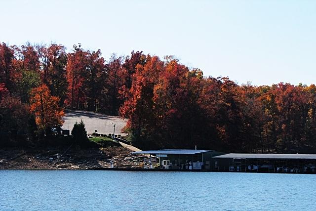 Marina Horseshoe Bend On Beaver Lake AR b